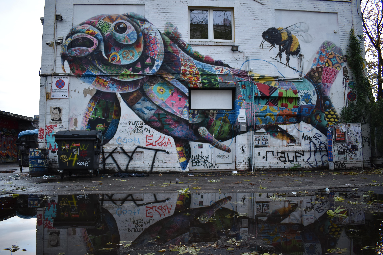 Google weggepest in Kreuzberg